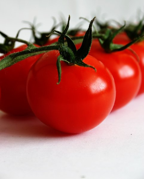 Cherry tomatoes, cherry, closeup, flora, food, nature, red, tomato, tomatoes, vegetable, photo