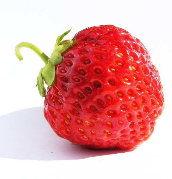 A strawberry shot a sunny day. , berry, closeup, delicious, food, fruit, nature, one, red, strawberry, sweet, photo